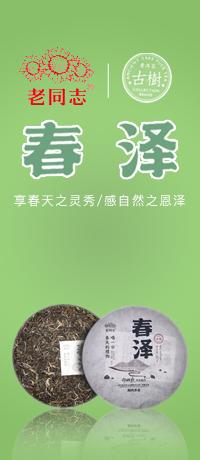 2017年中茶 布朗老树臻品 新品上市