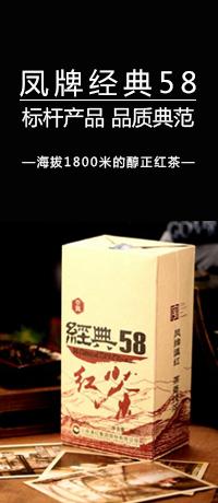 凤牌经典58