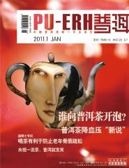 《普洱》杂志 2011年第1期 包邮