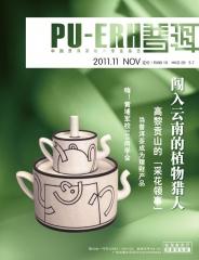《普洱》杂志 2011年第11期 包邮