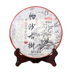 2017年老同志 名山系列 帕沙古树 生茶 500克/饼 单片