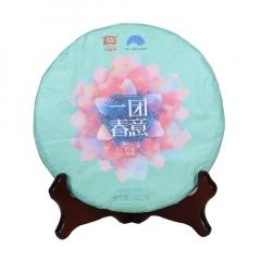 2017年大益 一团春意 生茶 357克/饼