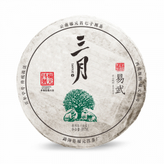 2019年福元昌 三月易武(头春正山纯料)春茶 生茶 357克/饼 单片
