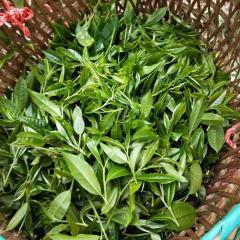 【春茶现货】2019年易武同庆河 小树茶(铜箐河) 头春纯料散茶 生茶 100克
