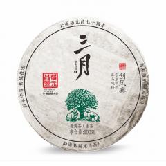 2019年福元昌 三月系列 刮风寨小饼(头春正山纯料)春茶 生茶 100克/饼 单片