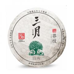 2019年福元昌 三月系列 莽枝(头春正山纯料)春茶 生茶 357克/饼 单片