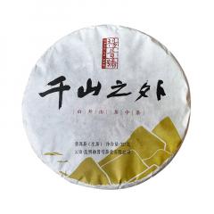 2019年杨普号 千山之外 生茶 357克/饼