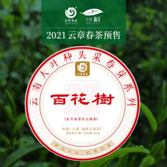 【春茶预售】2021年云章 百花树 头波早春茶 生茶 100克/饼 单片