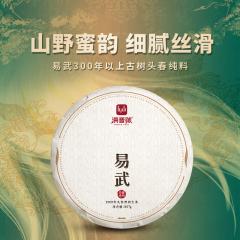 【春茶预售】2021年洪普号 珍藏易武 生茶 357克/饼 1饼
