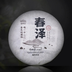 2021年老同志 春泽 生茶 357克/饼